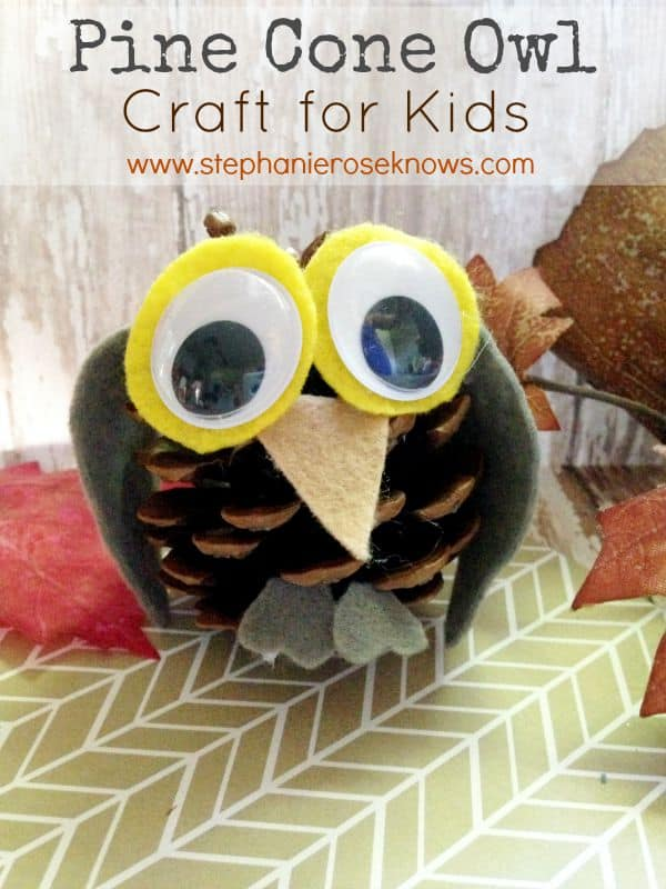 Pine Cone Owl Craft For Kids