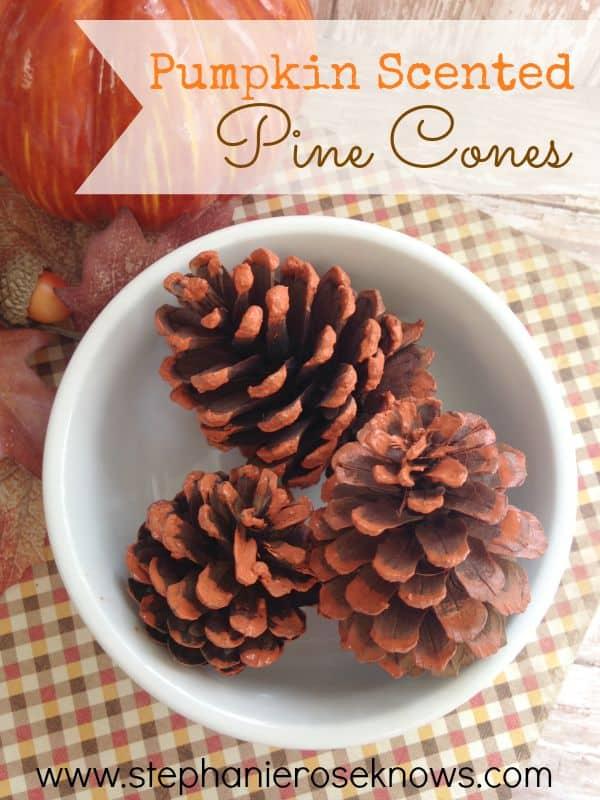 Pumpkin-Scented-Pine-Cones-1
