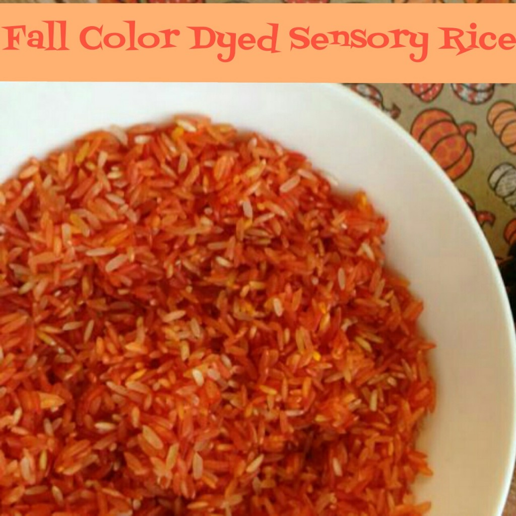 Fall Colored Dyed Sensory Rice