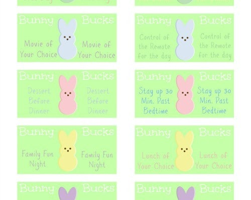 Wp rabbits coupon