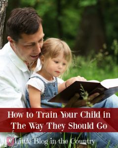 How to Train your Child in the Way They Should Go