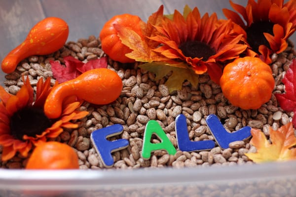 simple-fall-sensory-bin-sight-words