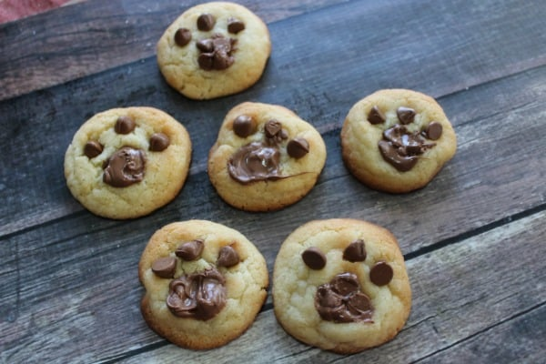 bear-stays-up-for-christmas-cookies