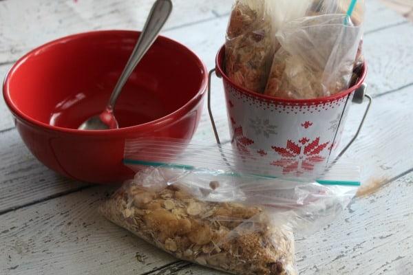 christmas-oatmeal-packet-flavors