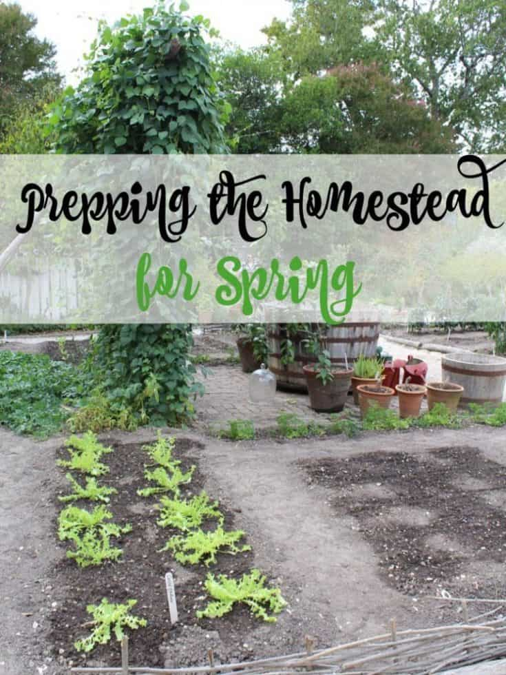 prepping the homestead for spring